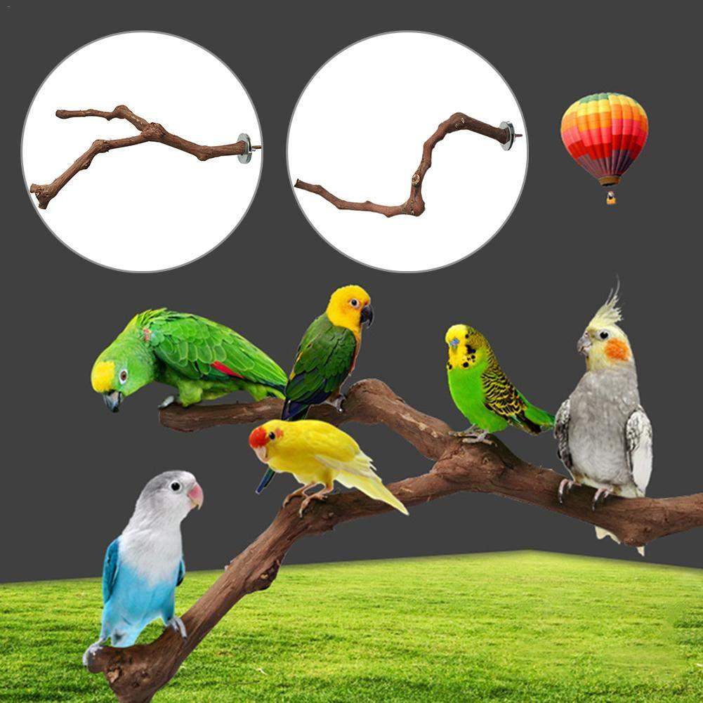 Navigatee Perca De Pájaro, Pájaro Salvaje UVA Rama De Madera, Loros De Aves De Compañía Rascarse El Palo De Masticar Saltar Perchas De Pie
