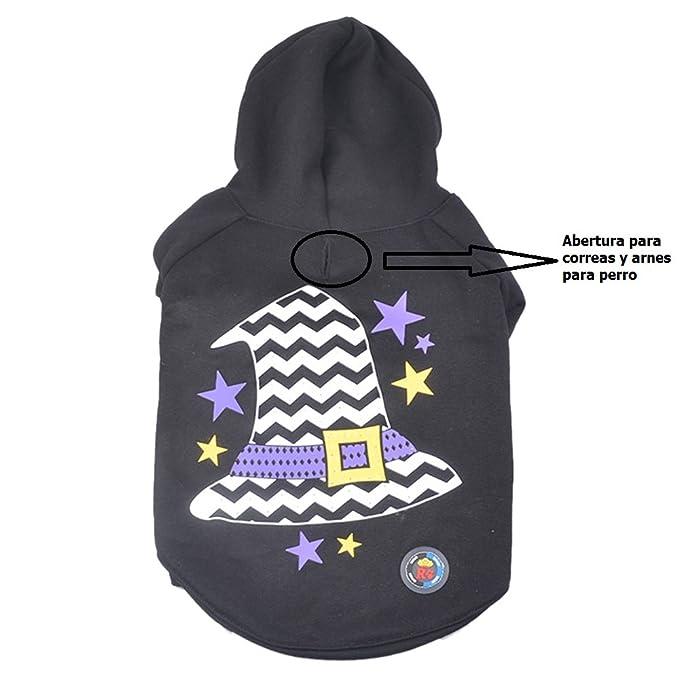Goodid ropa de perro con Luz LED (Sombrero de bruja L): Amazon ...