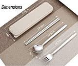Chopsticks Spoon Fork Set Flatware Dinnerware Stainless Steel 304 with Travel Box and Bag for School Work Luch (Wheat color)