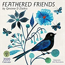 feathered friends 2020 wall calendar watercolor bird illustrations