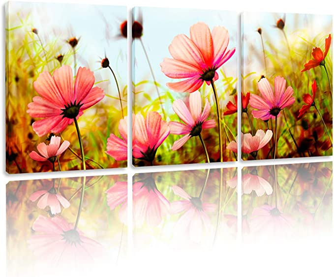 Amazon Com Bpago Modern Flowers Painting Plateau Gesang Wall Decor Landscape Paintings On Canvas Wall Art For Living Room Bedroom Home Office Bathroom Decoration 48 X 24 Inch Posters Prints