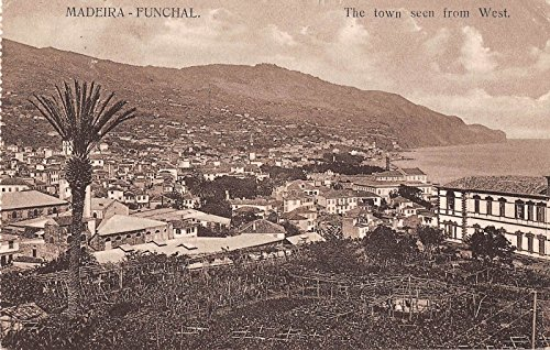 - Madeira Funchal Portugal bird's eye view of town from the west antique pc Y2728