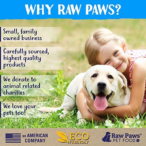 Cheapest Raw Paws Pet Probiotics for Dogs by means that of  Prebiotics Functional Treats Pumpkin Ginger 10 ounce soft Chews Made in USA Only 2 Billion CFUs Supports Digestive overal Diarrhea Relief Check this out