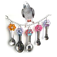 Bird Swing Toy with Metal Spoons for Parrot Budgie Parakeet Cockatiel Conure Lovebird African Greys Amazon Cockatoo Macaw Cage Perch
