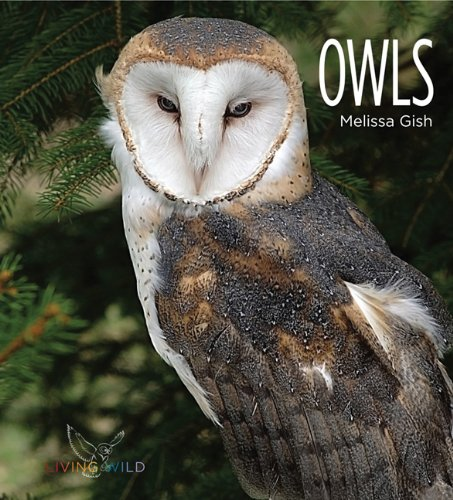 Read Online Living Wild: Owls pdf epub