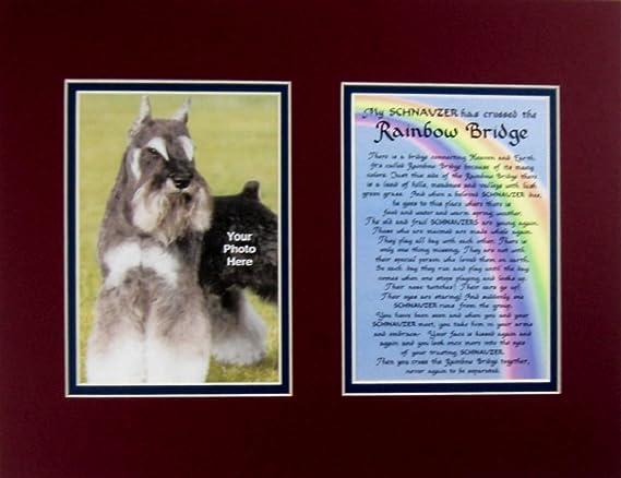 Schnauzer Dog Pet Memorial Rainbow Bridge Gift with Verse Lucky Dog