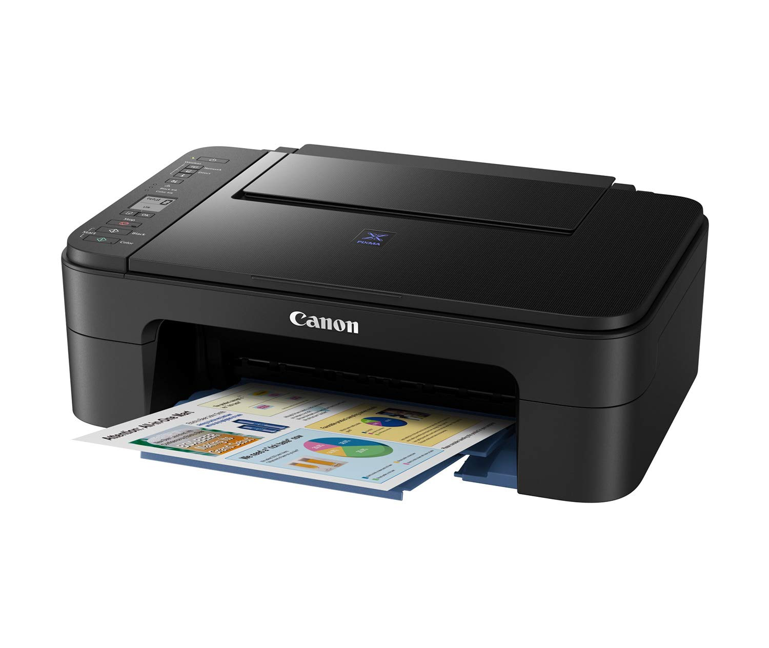 Tell me, please, the inkjet color printer Sanon pixma mg 5740, for home use, someone took