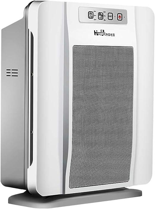 Purificadores de aire Hogar Smog Pm2.5 Humo Dormitorio Negativo Ion Mute Oficina Purificador: Amazon.es: Hogar