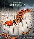 ムカデの迫りくるラジコン 百足 ラジコン 虫 2CH イベント サプライズ プレゼント 生物 子供 おもちゃ ジョーク TASTE-RC-MUKAD