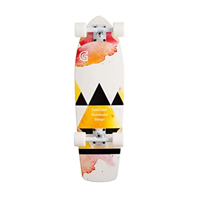 Salvia Cruiser Complete Skateboard : Sports & Outdoors