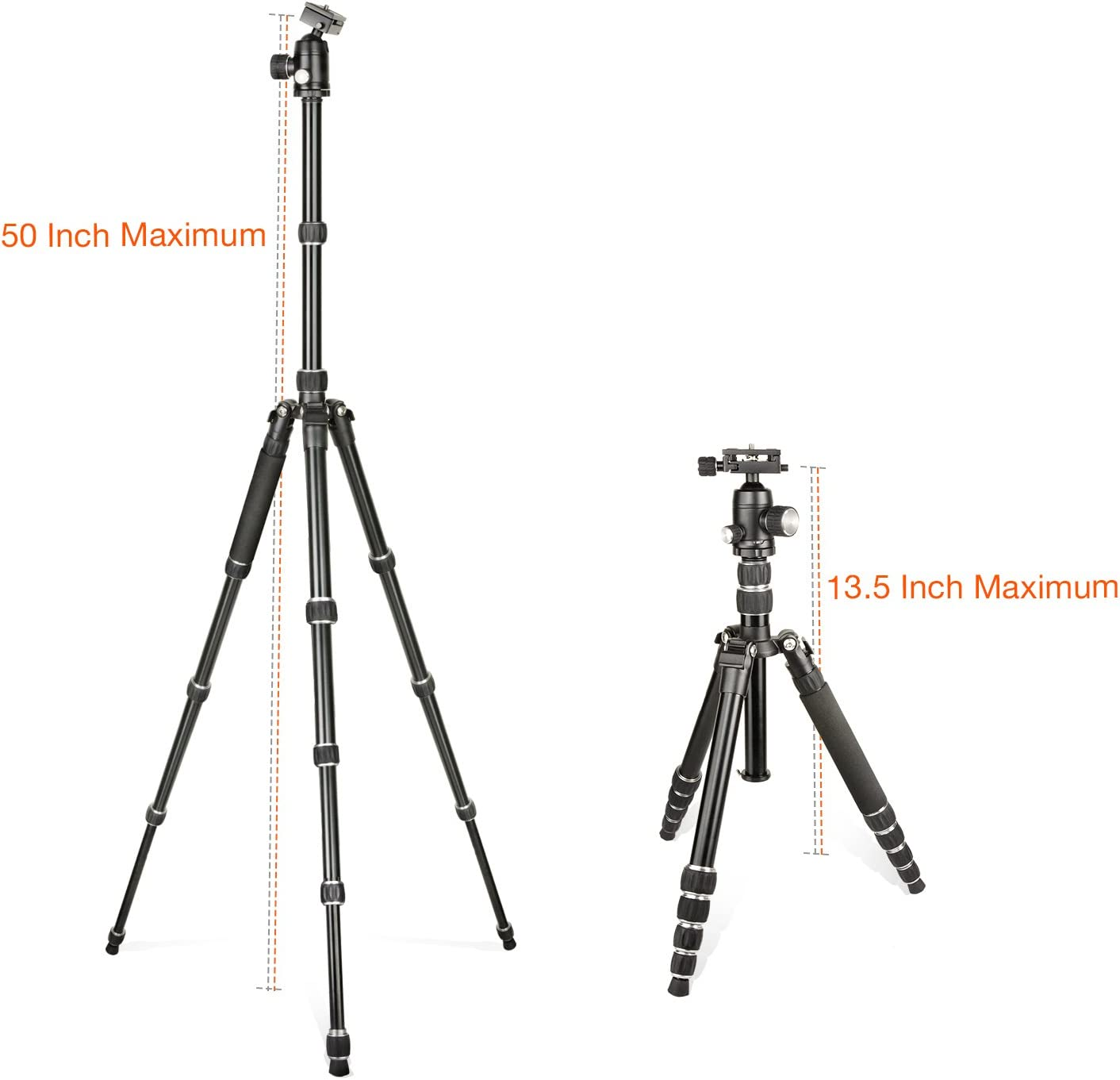 LS Photography Professional 50 Trans-Functional Travel Angle Carbon Fiber Tripod//Monopod Quick Release Plate LGG692 and Panning Scale Foldable and Compact with 360/° Smooth Large Ball Head