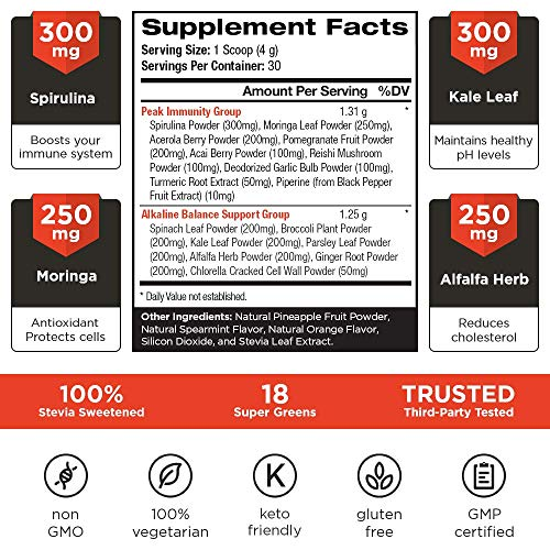 VINTAGE BLOOM Superfood Powder Antioxidant Supplement - 18 Super Greens Ingredients - Immune System Support - Balances pH & Provides Antioxidants - Keto Friendly - Fresh Mint - 30 Servings 120g Powder