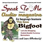 Speak to Me, Spanish: An Audio Magazine for Language Learners | Jennifer Ranger