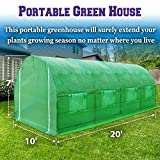 BenefitUSA Outdoor Green House Walk In Garden Greenhouse Canopy Gazebo Plant House (20'X10'X7')