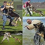 MelkTemn Professional Dog Bite Training Set Dog