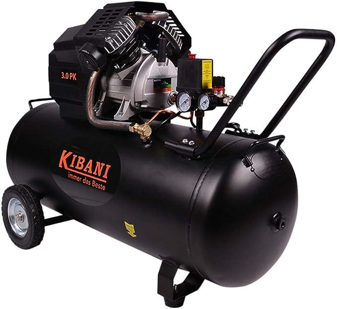 Kibani Compressor 100 Liter 3 Pk Baumarkt