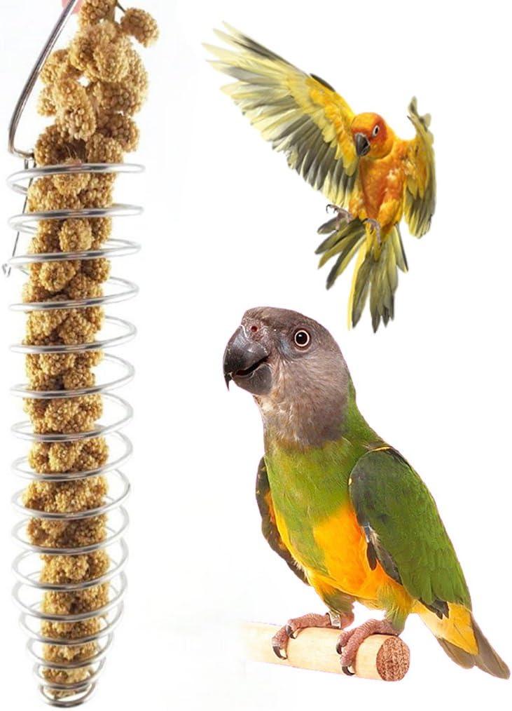 ZIRAN Cibo per pappagalli Cesto di Frutta Miglio Dispositivo di Alimentazione in Acciaio Inossidabile Mangiatoia per Gabbie per Uccelli Gabbia per Uccelli
