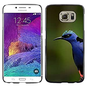 Plastic Shell Protective Case Cover || Samsung Galaxy S6 SM-G920 || Colorful Nature Spring Summer @XPTECH