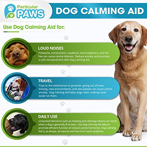 Best Dog Calming Aid Uk