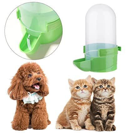 Everpert Dispensador de Agua para Gatos y Perros, 1 l, Botella de Bebida automática