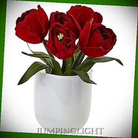 JumpingLight Tulipanes con jarrón de Cristal Blanco Flores ...