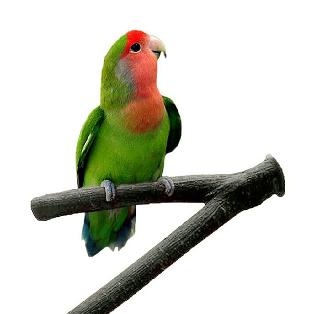 Ukallaite Funny Parrot Wooden Fork Stand Rack Cute Pet Parrot Raw Wood Fork Stand Rack Toy Hamster Branch Perches Bird Cage Pet Supplies