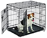 MidWest Life Stages Folding Metal Dog Crate 24 inch with divider