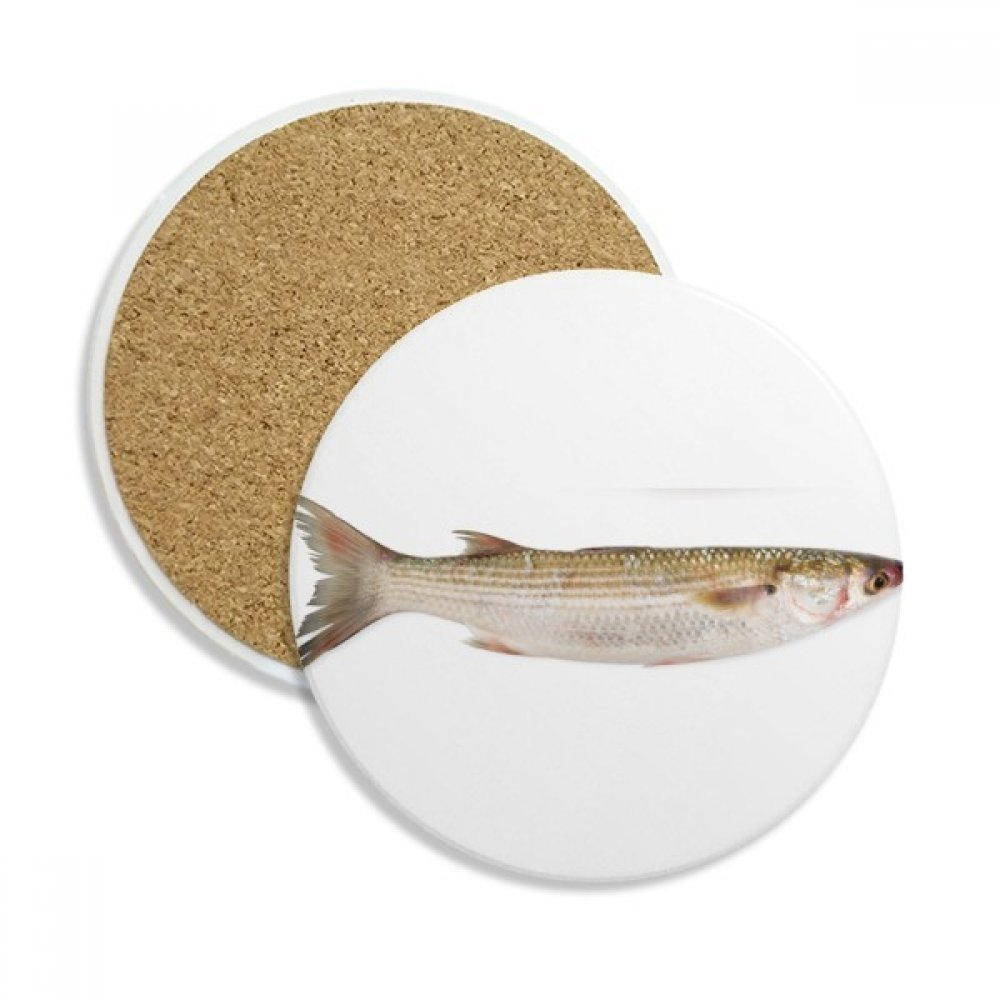 Ocean Fish Fresh Activity セラミックコースターカップマグホルダー ドリンク用吸収ストーン 2個 ギフト   B076GZHMZW