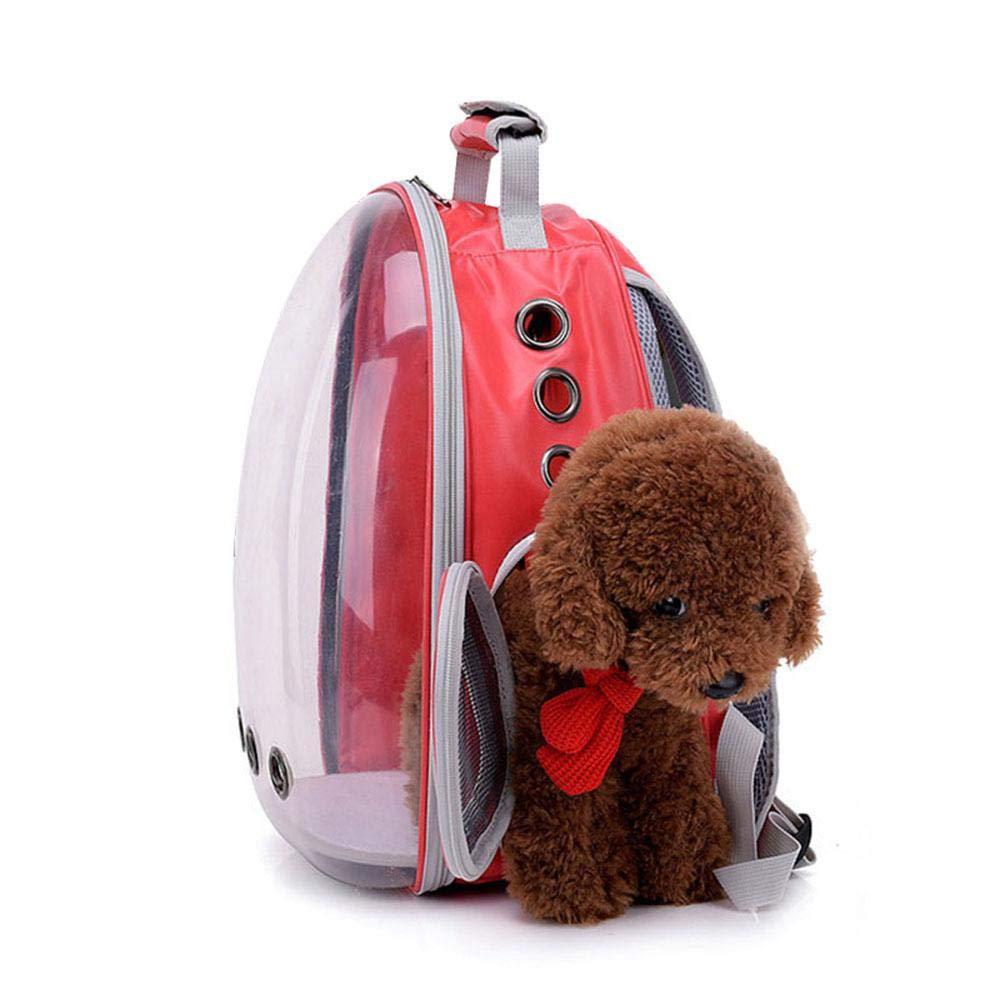 AOLVO Bolsa Transporte Impermeable para Perros Gatos Respirable Elegante y Hermoso Espacio Grande