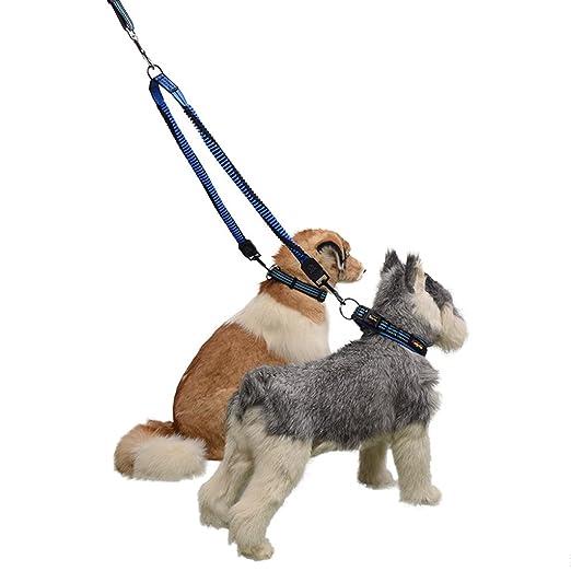 ZXC145 Bungee Dog Walking Coupler para Dos Perros con Una Correa ...