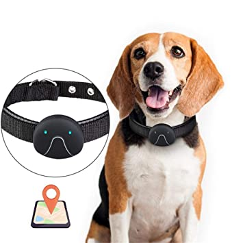 Perros GPS Rastreador de posicionamiento GPS del perro Perseguidor GPS Trazador inteligente de seguimiento en tiempo