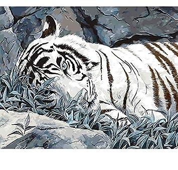 Mylooo Trauriger Tiger Diy Malen Nach Zahlen Tier Zeichnung Malen