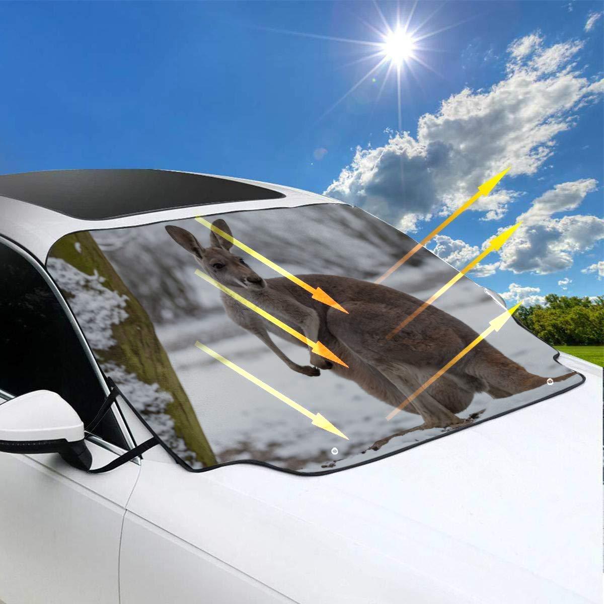 Auto Sonnenschutz Auto Ein K/änguru steht im Grasland Sonnenschutz f/ür das Auto 57.9x46.5 Zoll7147cmx118cmcm f/ür die meisten Fahrzeuge indem Sie die Windschutzscheibe und den Scheibenwischer vor Sonn