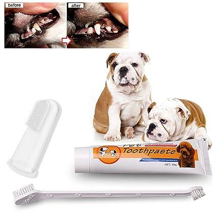 HYGMall 3 UNIDS en 1 Unidades Nutrición Para Mascotas Cepillo de Dientes Herramientas de Lavado Pasta