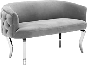 Tov Furniture The Adina Collection Contemporary Living Room Velvet Upholstered Loveseat, Grey with Silver Legs
