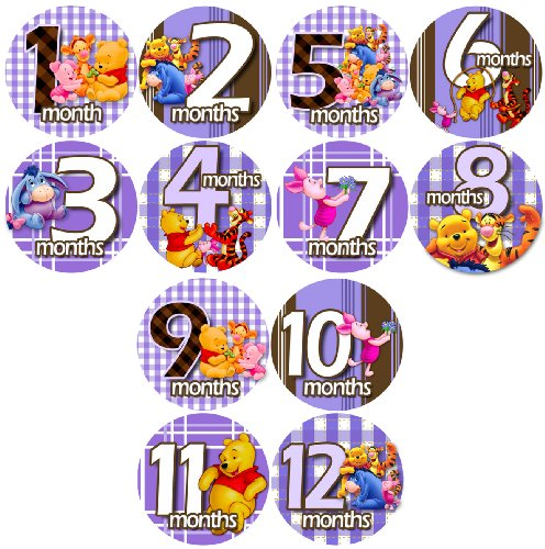 (Monthly Baby Bodysuit Stickers, PURPLE WINNIE POOH FRIENDS Baby Month Onesie Stickers Baby Shower Gift Photo Shower Stickers, photo prop by OnesieStickers)
