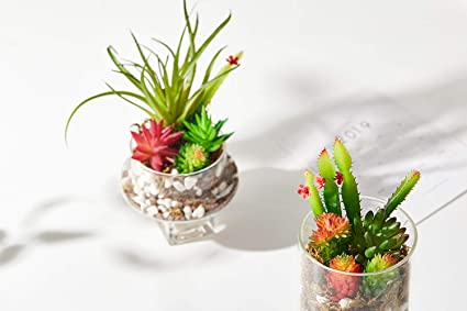 Amazon com: FLORRALIA Artificial Succulents Plants