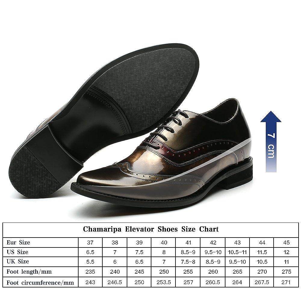 CHAMARIPA Herren Schnürhalbschuhe Schnürung Männer Schuhe Aufzug Höhe zunehmende Schnürung Schnürhalbschuhe Blau zunehmende Schnürung Brogues Hochzeit Business Party H81D38D062D d0023b
