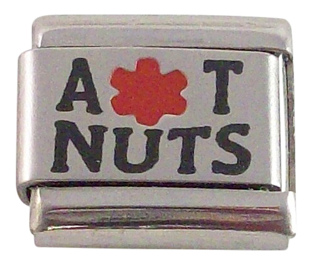2 Allergic to Nuts Medical ID Alert Italian Charms for Bracelet Allergy