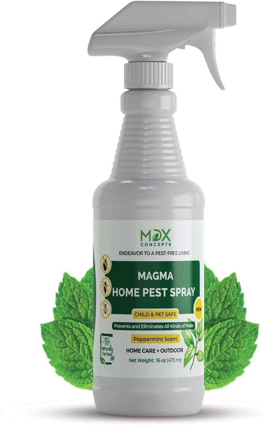 Dog Safe Ant Killers - Exterminate Ants while Your Dog is Completely Protected! 5