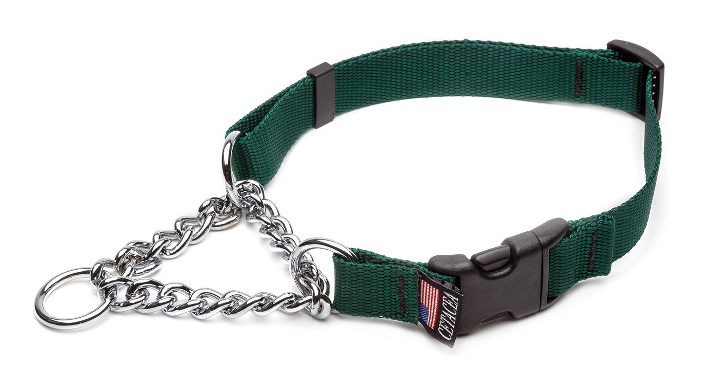 Forest Green Medium Forest Green Medium Cetacea Chain Martingala Dog /Pet Collar con Quick Release, Medium, Forest Green