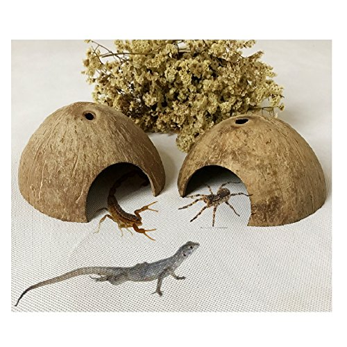 Stock Show 2Pack Coconut Shell Hut Natural Habitat Reptile Hideouts, Lizard, Spider and Aquarium Fish Hide Cave