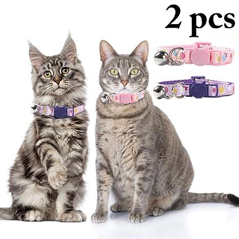 Legendog 2 Piezas de Collar de Perro Collar de Gato Ajustable ...