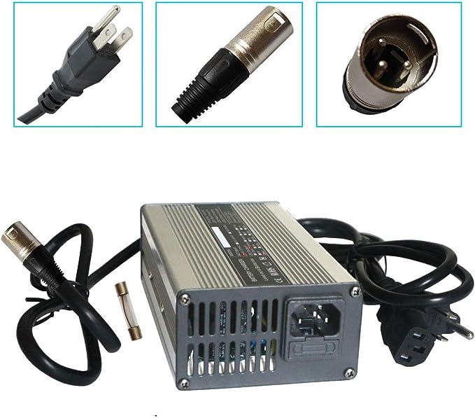 Amazon.com: Cargador de batería de 24 V 8 A con conector XLR ...