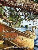 Lost in Wonderland : Reflections on Palm Beach, Mayhew, Augustus, 0983153027