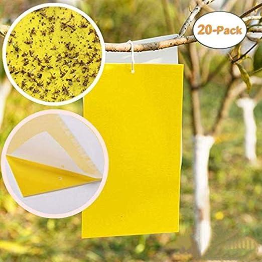 QCHOMEE – Lote de 20 trampas de Pegamento de Doble Cara Amarilla ...