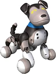 Top 10 Best Robot Pets For Kids (2021 Reviews & Buying Guide) 6