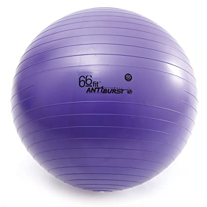 66FIT Pelota de Gimnasia, Incluye inflador, 55 cm: Amazon.es ...
