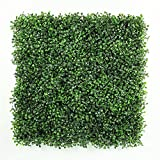 ULAND Artificial Boxwood Hedges Panels, Decorative Privacy Fence Screening, UV proof, 100% Fresh PE, Garden Wall Decoration  (12, Green Jade)
