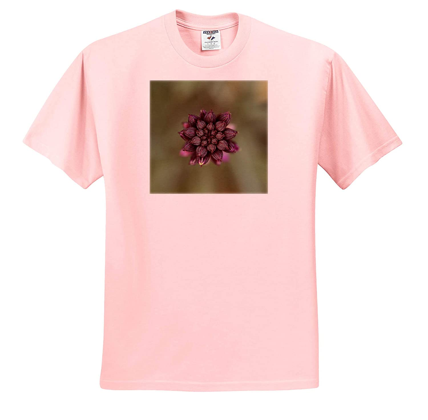 Flowers Beautiful Macro Photograph of a Bowles Mauve WallFlower in The Winter - T-Shirts 3dRose Stamp City